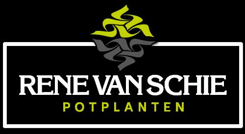 Logo-wit-Rene-van-Schie-Potplanten