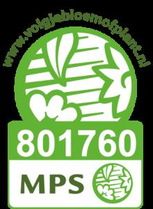 Vinget MPS v1 - Rene van Schie - Potplanten