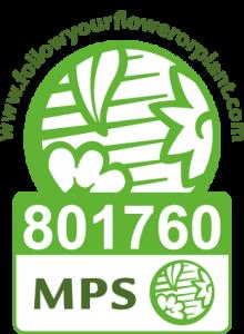 Vinget MPS v2 - Rene van Schie - Potplanten