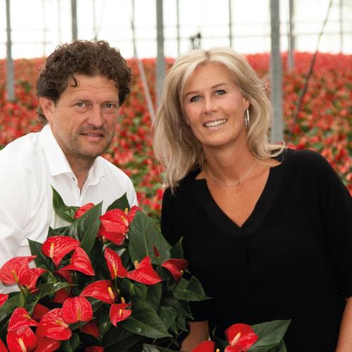 Contact - Rene & Karin van Schie Potplanten - 2019